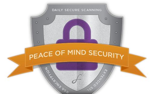 Peace of Mind Security